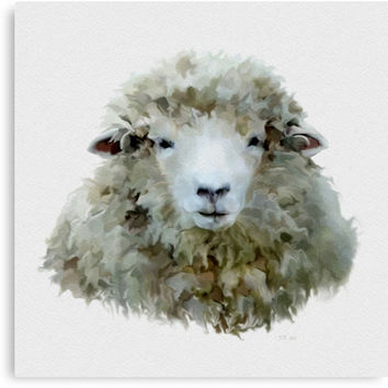 'Sheep' Canvas Print by Bamalam Art and Photography