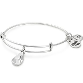Birth Month Charm Bangle With Swarovski® Crystal