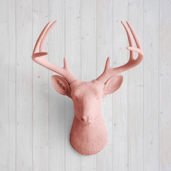 The Virginia Large Salmon Faux Taxidermy Resin Deer Head Wall Mount | Salmon Stag w/ Colored Antlers