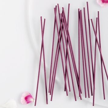 Free People Smokeless Organic Incense
