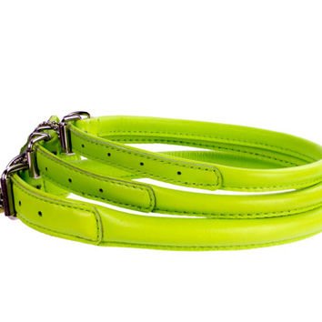 Rolled Round Leather Lime Dog Collar Soft Padded 7 Sizes Miniature to Large breeds