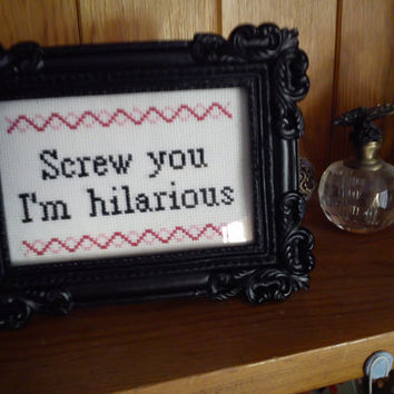 Screw you I'm hilarious. Completed cross stitch movie quote