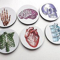 color round Anatomy Coasters 3.5 inch neoprene graduation medical doctor nurse skull brain hand anatomical heart
