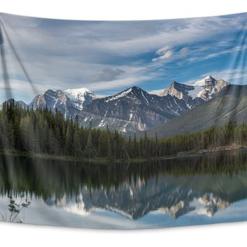 MOUNTAIN LANDSCAPE Tapestry By David Phillips