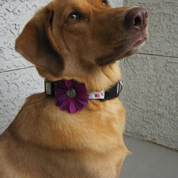 Daisy Dog Collar Flower Accessory- Violet