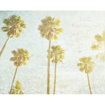 Vintage Palm Trees photo. SoCal. Beach. Vintage photography. retro home decor. california. green gold blue. california art