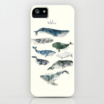 Whales iPhone & iPod Case by Amy Hamilton