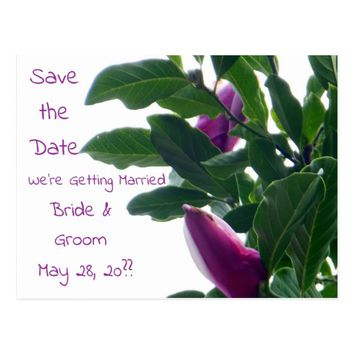 Blossoming Magnolias Save the Date Postcard