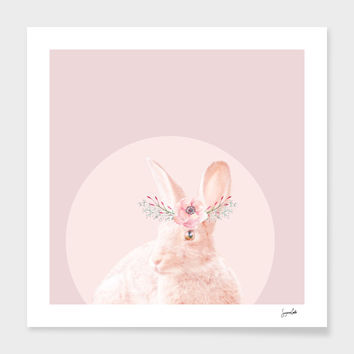 «biar rabbit» Art Print by Suzanne Carter - Numbered Edition from $24.9 | Curioos