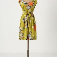 Chartreuse Shoots Dress - Anthropologie.com