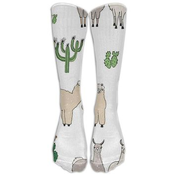 Cactus Llama V2 Novelty Cotton Knee High All-Over Printed Socks
