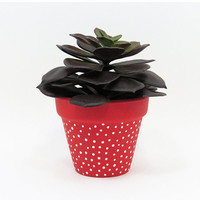 Terracotta Pot, Succulent Planter, Cute Planter, Small Pot, Red Planter, Air Plant Holder, Succulent Pot, Indoor Planter, White Dots