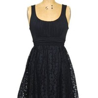 Lovely in Lace Dress: Black - $39.99 : Spotted Moth, Chic and sweet clothing and accessories for women