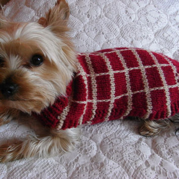 small dog sweater hand knit, yorkie clothes, yorkie coat, small dog clothes, pet clothing, yorkie sweater