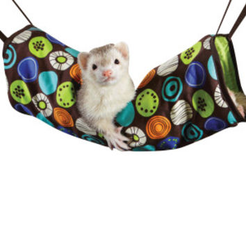All Living Things® Ferret Tunnel | Toys & Habitat Accessories | PetSmart