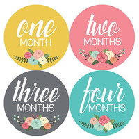 Months In Motion - Baby Month Stickers - Monthly Baby Sticker for Girls - Floral (1104)