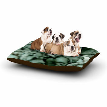 "Claire Day ""Grey"" Neutral Dog Bed"