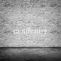 Brick wall 10ft x 10ft Backdrop Computer Printed Photography Background ZJZ-229