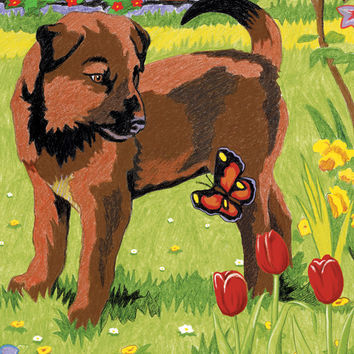 "Mini Color Pencil By Number Kit 5""""X7""""-Puppy & Butterfly"