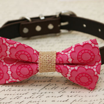 Hot pink Dog Bow Tie, Bow attached to brown dog collar, Burlap ,wedding accessory, Christmas gift, dog lovers, love pink, Floral dog bow tie