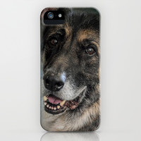 Portrait of a Shepherd - German Shepherd iPhone & iPod Case by Jai Johnson