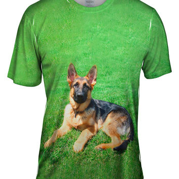 German Shepherd On Grass