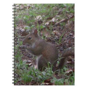 Squirrel Spiral Photo Notebook