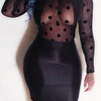 Black Sheer Mesh Backless Bodycon Dress