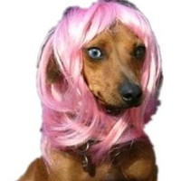 Pet Supplies -Dog Costumes Pink Wavy Syethetic Hair Pet Dog Cat Wigs-gift