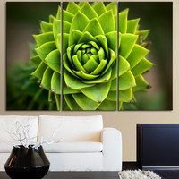 Green Cactus Flower Canvas Print Ready to Hang 3  Panels Stretched on Deep 3cm Frame