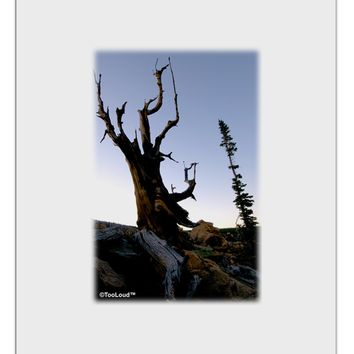 Colorado Mountain Scenery Aluminum Dry Erase Board by TooLoud
