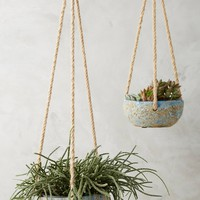 Reactive Hanging Planter