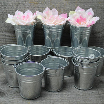 Mini Galvanized Steel Buckets Pails with Handles Generic Set of 15