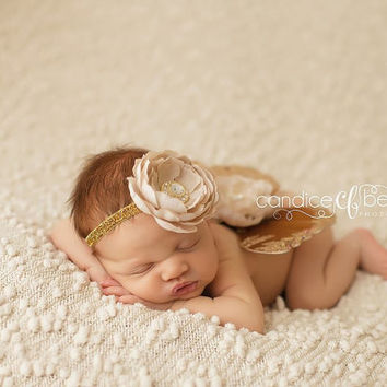 Baby Butterfly Wings, Newborn Wings, Baby Girl Photo Prop, Glitter Wings, Newborn Butterfly Wings
