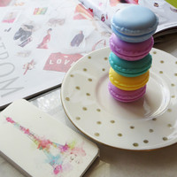 Colorful French Macaroon Jewelry Holder Box