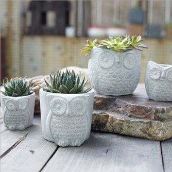 AIBEI-Creative Cement Owl Garden Pots Planters Succulents Flower Green Plant Miniature Decoration