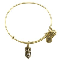 Alex and Ani Ode to the Owl Charm Bangle - Rafaelian Gold Finish