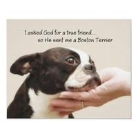Boston Terrier True Friend Poster from Zazzle.com