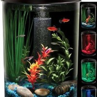 API Aquaview 360 Aquarium Kit with LED Lighting and Internal Power Filter, 3-Gallon