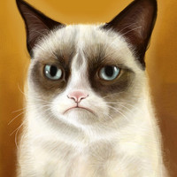 Grumpy Cat Tardar Sauce - iPad Finger Painting Stretched Canvas by Olechka | Society6