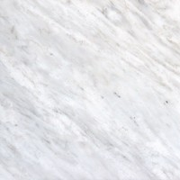 MS International Greecian White 12 in. x 12 in. Polished Marble Floor and Wall Tile (5 sq. ft. / case)-THDVENWHT1212 - The Home Depot