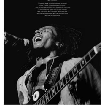 Bob Marley - Iron Lion Zion Lyrics Laminated Poster (24 x 36)