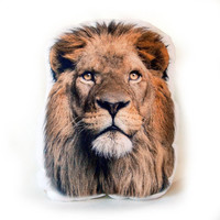 Colorful Lion Pillow – Lion Head, Stuffed Animal Pillow, safari decor, 18x14