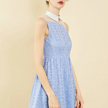Double Crazy Contrast Mesh Collar Neck Lace Trim Dress
