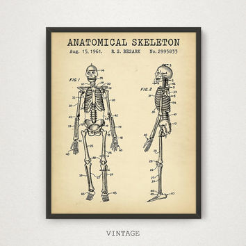 Anatomy Art, Anatomical Human Skeleton Patent Printable, Medical Decor Doctors Office Nurse Gift, Medical Student Gift Art Hospital Wall Art