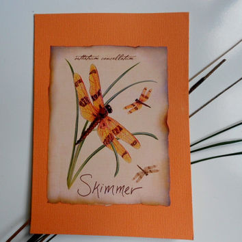 Skimmer Summer Blank Expressions 2012 Handmade Greeting Card