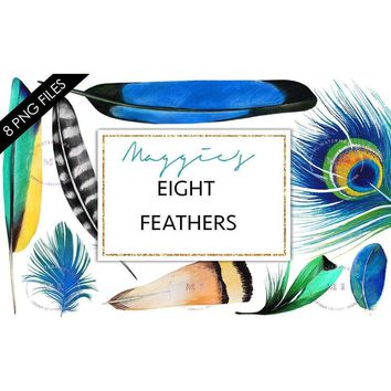 FeathBlue Watercolor Feathers Clip Art Pack