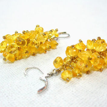 Yellow Amber Cluster Earrings Beaded Dangle Earrings Lightweight Natural Organic Jewelry Baltic Amber