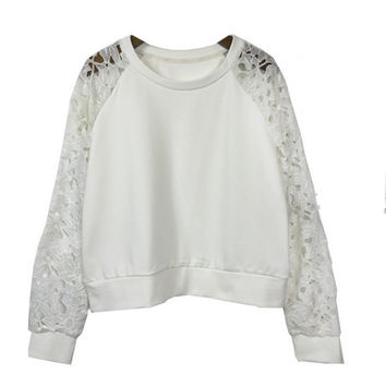 Sheer Mesh Long Sleeves Embroidered Lace Blouse