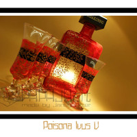 Poisona Ivius V. - Hand Painted Amaretto Bottle with glasses, Disaronno Bottle,  Set of 4 glasses and 1 bottle